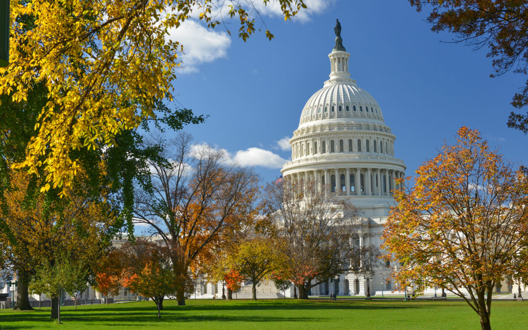 5 Spots Near Washington, D.C. To See Fall Foliage